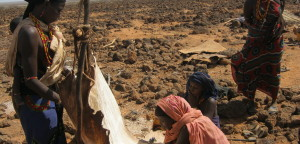 Ens arriben notícies des de Marsabit (Kenya)