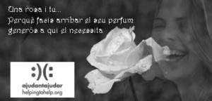 """""""Una rosa i tu"""". En memòria de la Marta"""