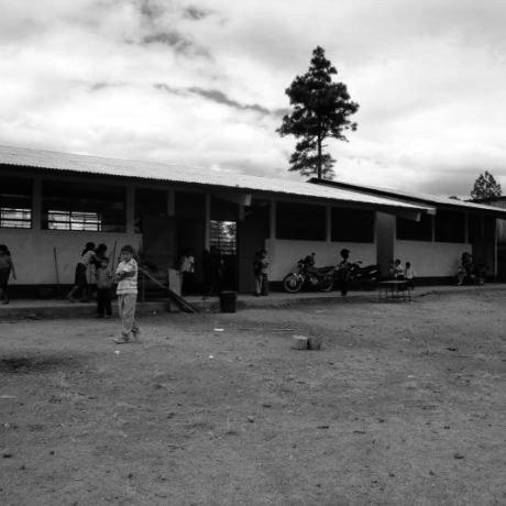 Suport alimentari a famílies desplaçades