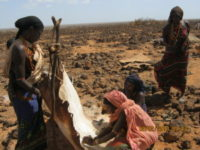Nos llegan noticias desde Marsabit (Kenia)