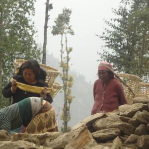Lisanku Nepal16